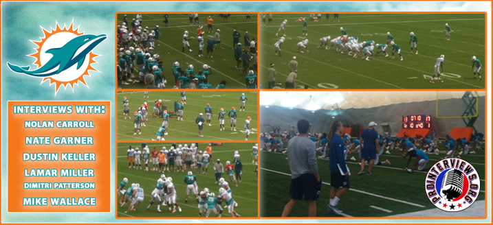 GRAPHIC phins CAMP
